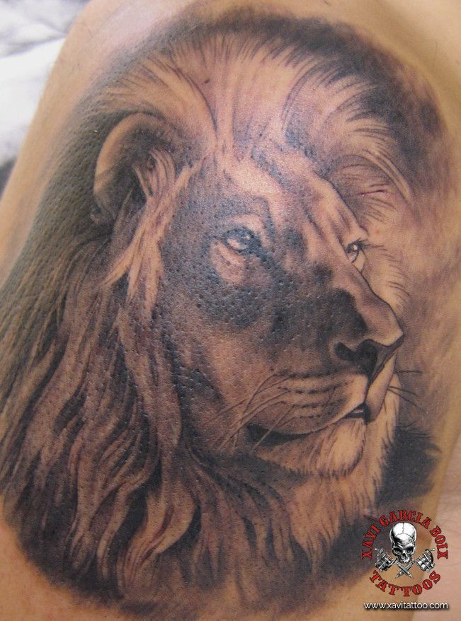 xavi garcia boix tattoo retrato realismo portrait realism tatuaje valencia diversos random leon lion africa nature naturaleza animales animals savage